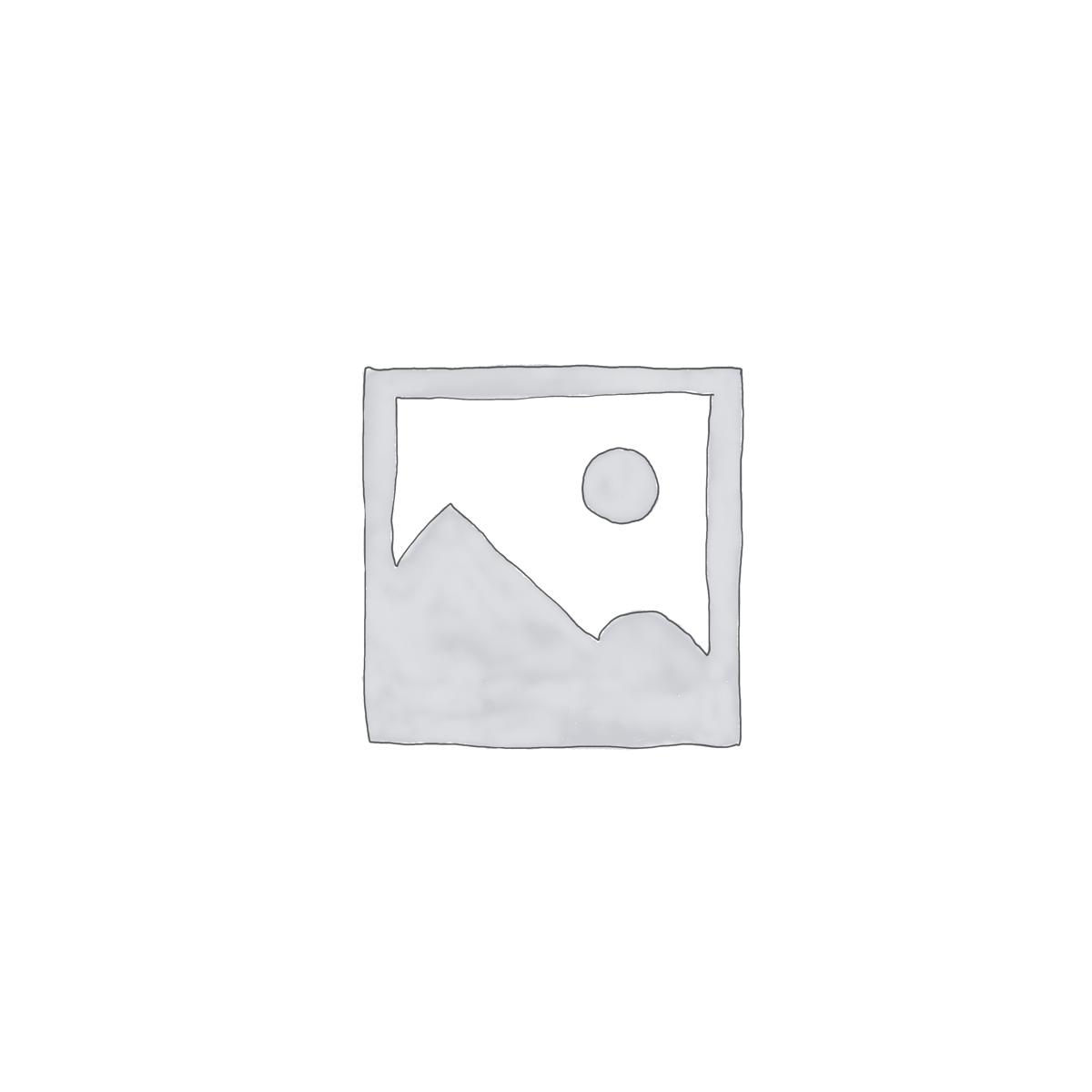 Leiterschnalle (Schieber)